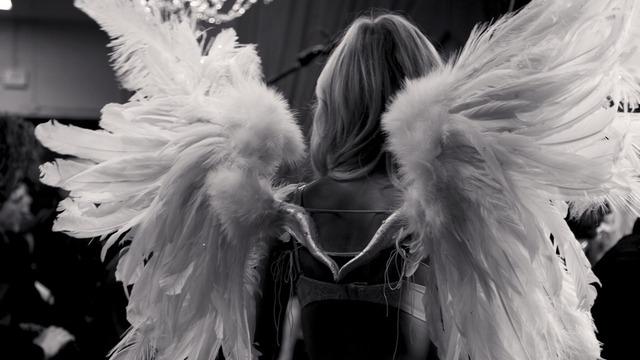 Resultado de imagem para angel wings tumblr