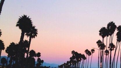 Summer Tumblr