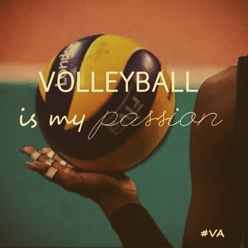 Volleyball Wallpaper And Themes