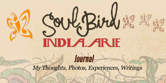 SoulBird Journal