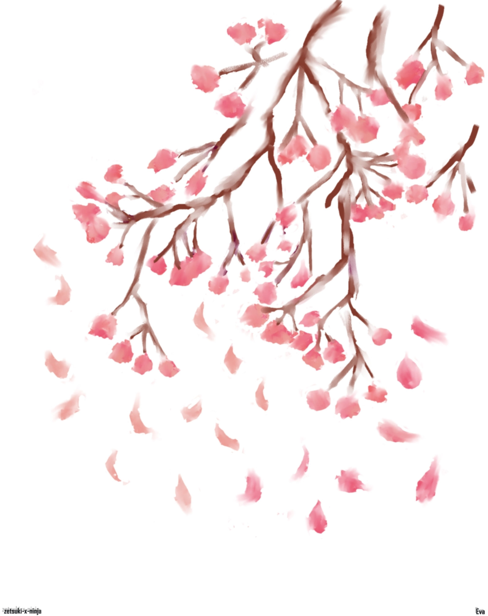 It is a graphic of Clever Sakura Flower Drawing