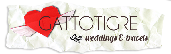 Destination Wedding Videographers