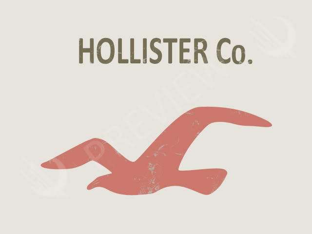 Hollister Logo Related Keywords & Suggestions - Hollister ...