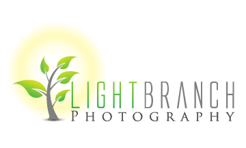 Lightbranch