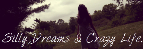 SillyDreams&CrazyLife.
