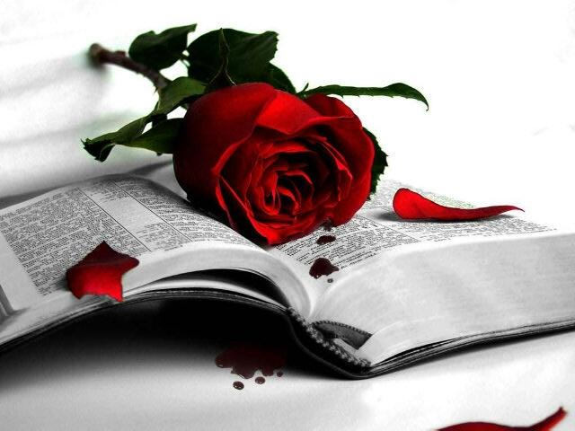 rose_book.jpg