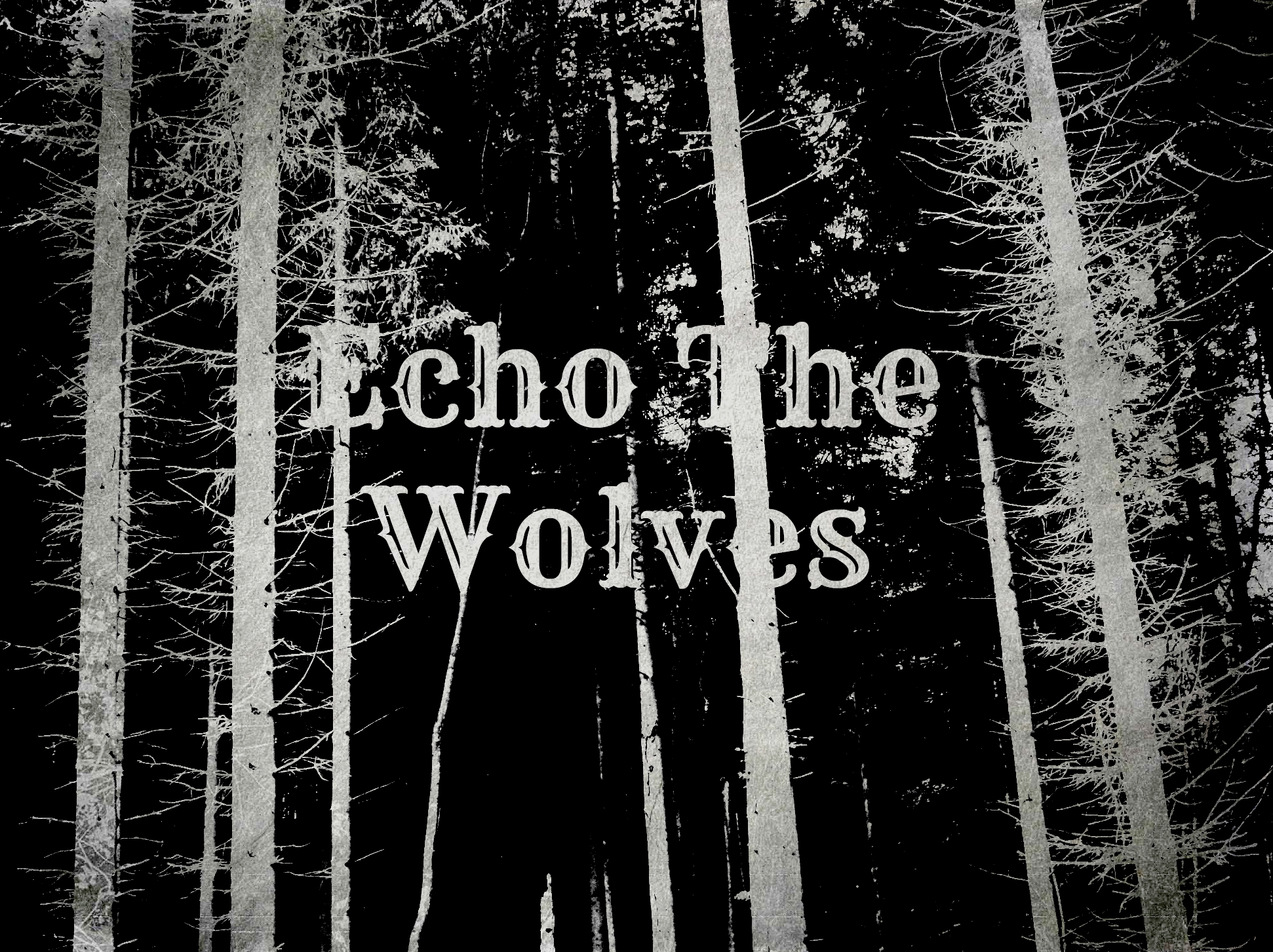 Echo The Wolves