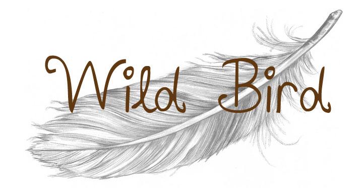 Silver Bird
