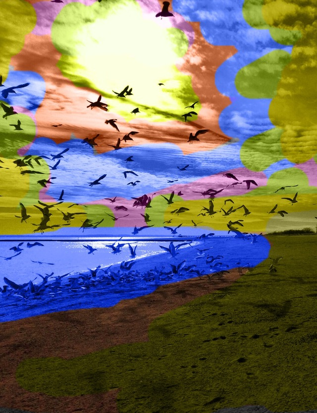 Sasha Majerovskys Color Splash Art Photography