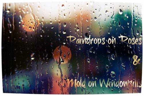 Raindrops on Roses and Mold on Window Sills