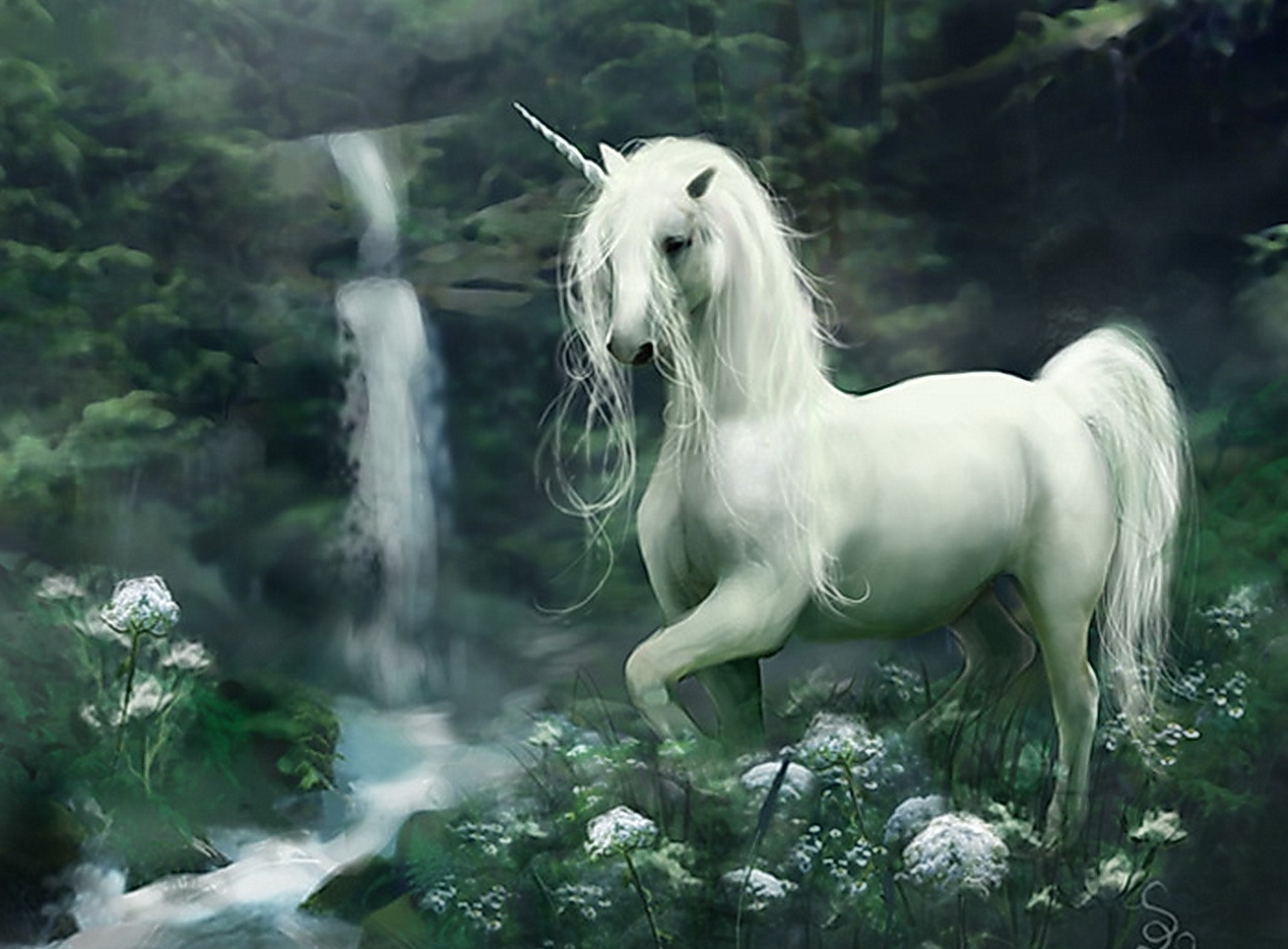 Beautiful Wallpaper Horse Wolf - tumblr_static_the_unicorn  You Should Have_166893.jpg