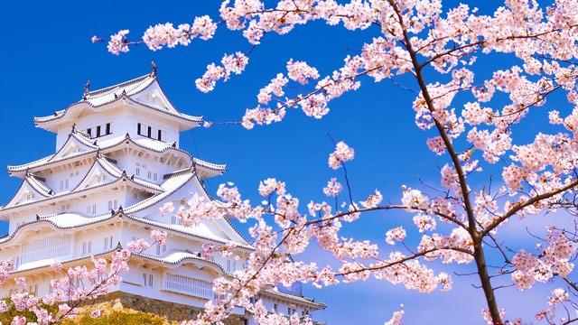 Resultado de imagen de japan tumblr