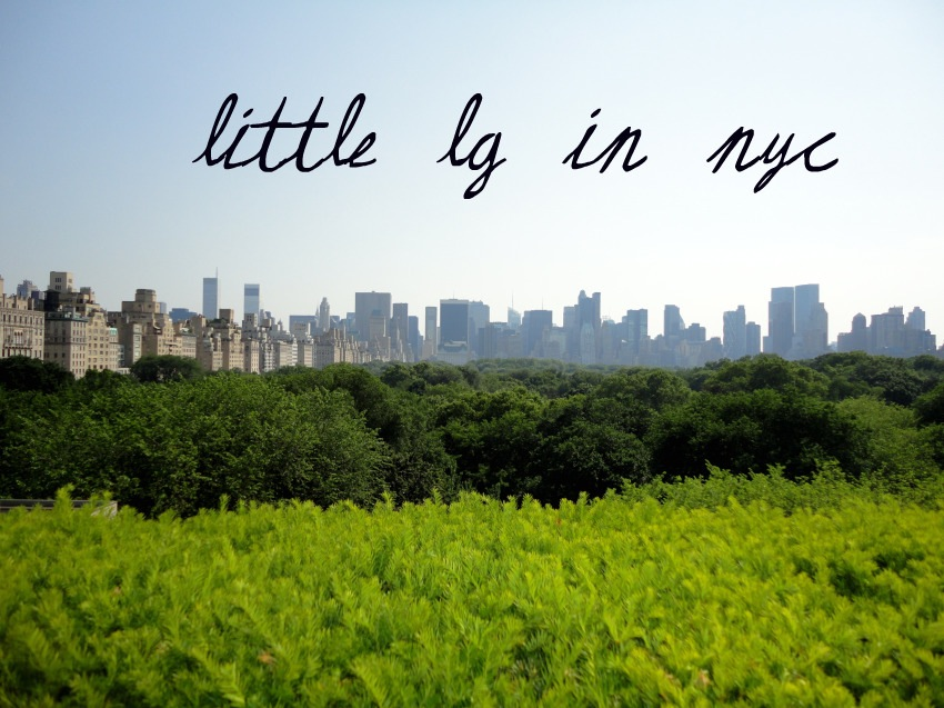 Little LG in NYC