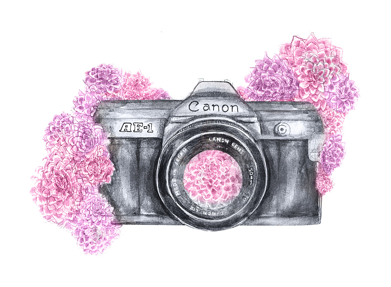 Camera Vintage Tumblr : Pictures of pink photography cameras tumblr kidskunst