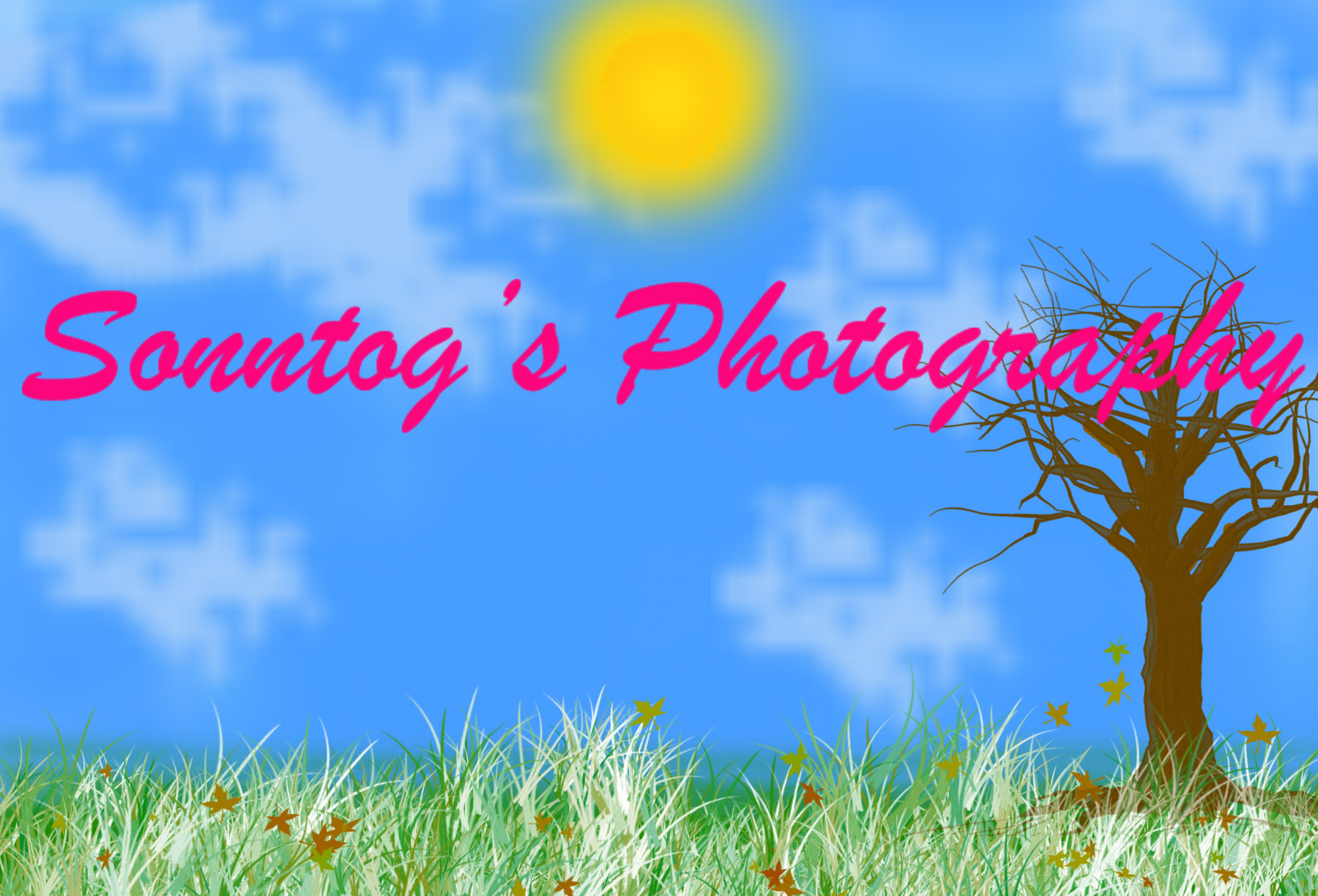 Sonntog's Photography