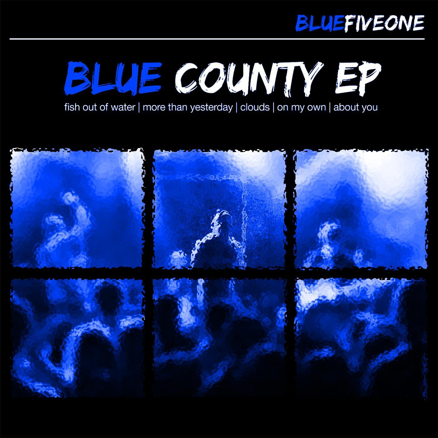 BLUE Fiveone