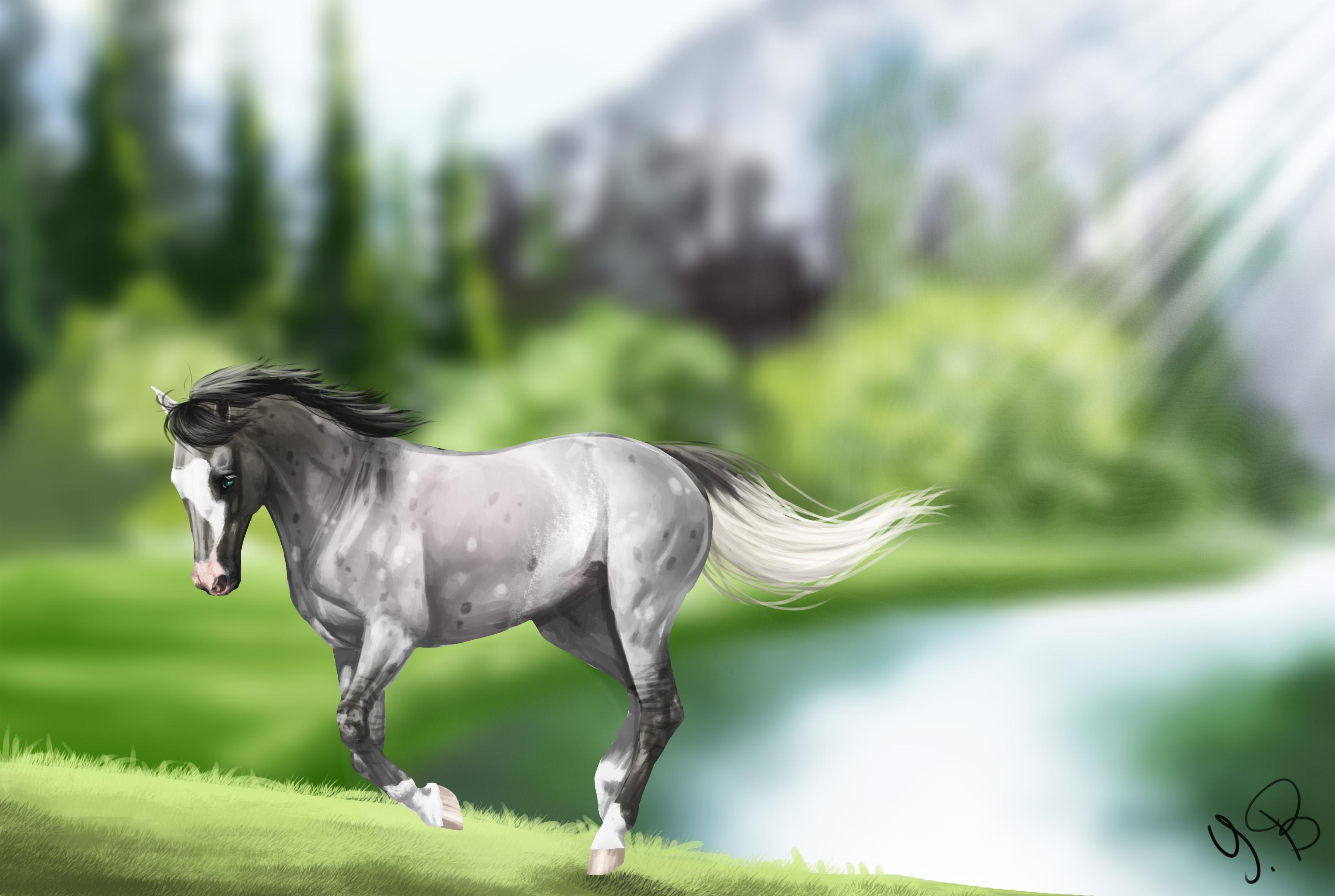 Beautiful Wallpaper Horse Wolf - tumblr_static_e2qhctm47o8c4gcg4c80c4sc4  You Should Have_166893.jpg