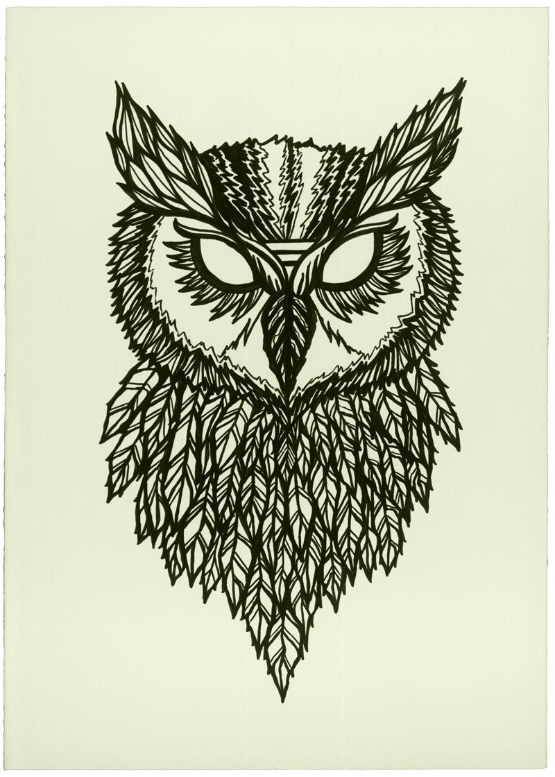 Cool Wallpaper Home Screen Owl - tumblr_static_f4c0x8bqg3cwogwo488gkgo4w  You Should Have_296735.jpg