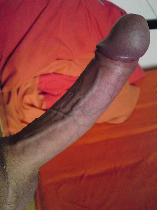 Beautiful Cocks 101