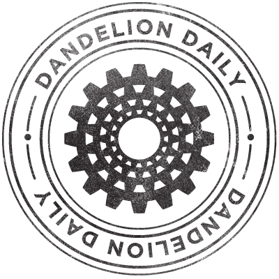Dandelion Daily