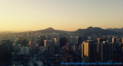 Heart Mind & Seoul