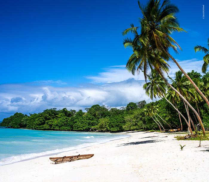 Vanuatu Beaches: Vanuatu Islands