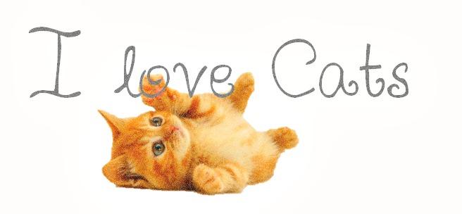 links [lovingcats5ever.tumblr.com]