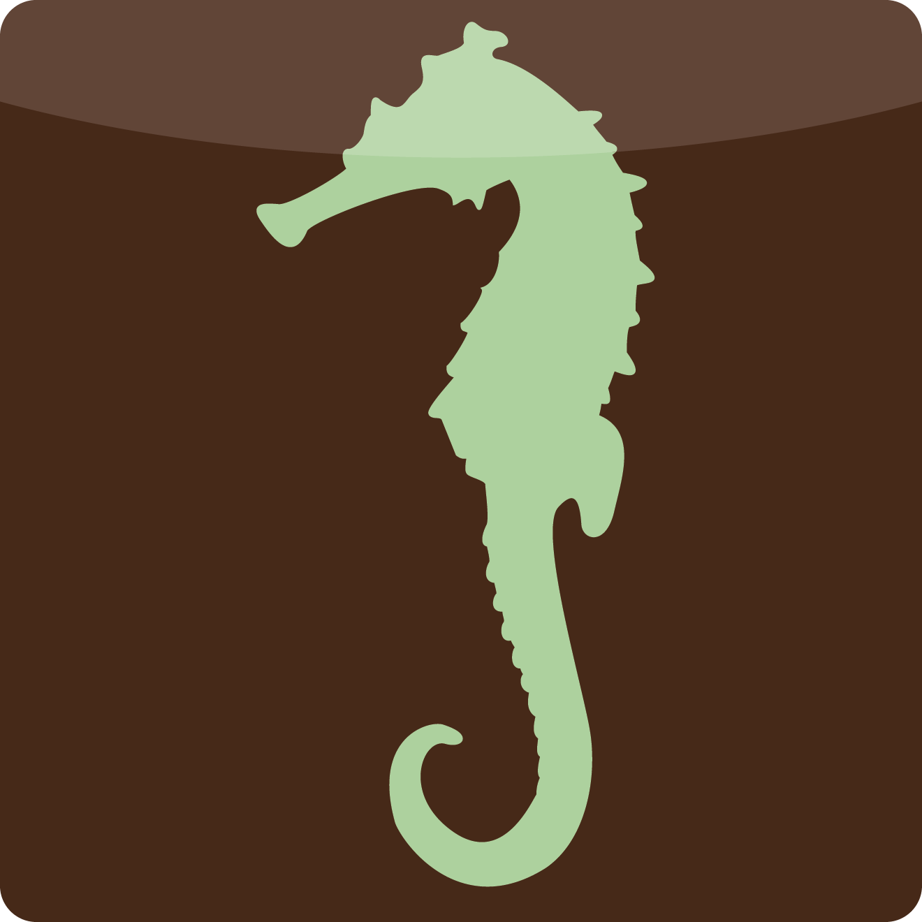 The Seahorsesseahorse