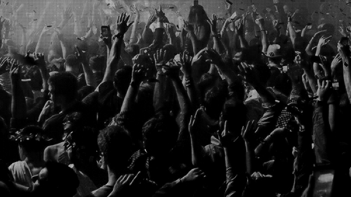 concert crowd tumblr black and white wwwpixsharkcom