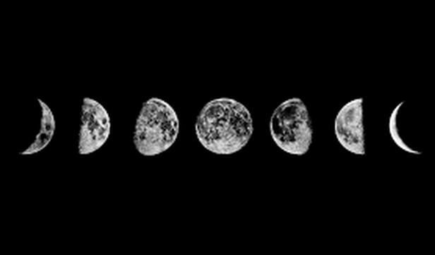 yang moon | Tumblr