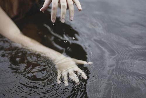 Связанная вода картинки