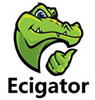 Ecigator Electronic Cigarette Wholesale