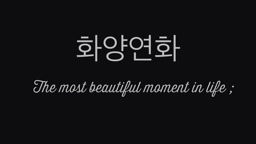 Sorry, that Korean black and white words tumblr will know