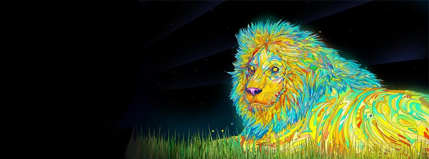 Images Of Trippy Lion Wallpaper Calto