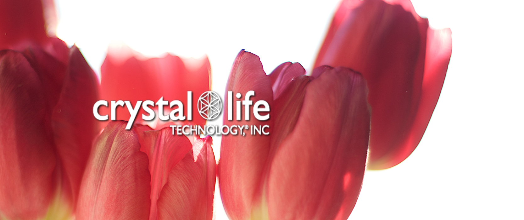Crystal Life Technology