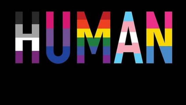 Types of sexual orientation tumblr wallpaper