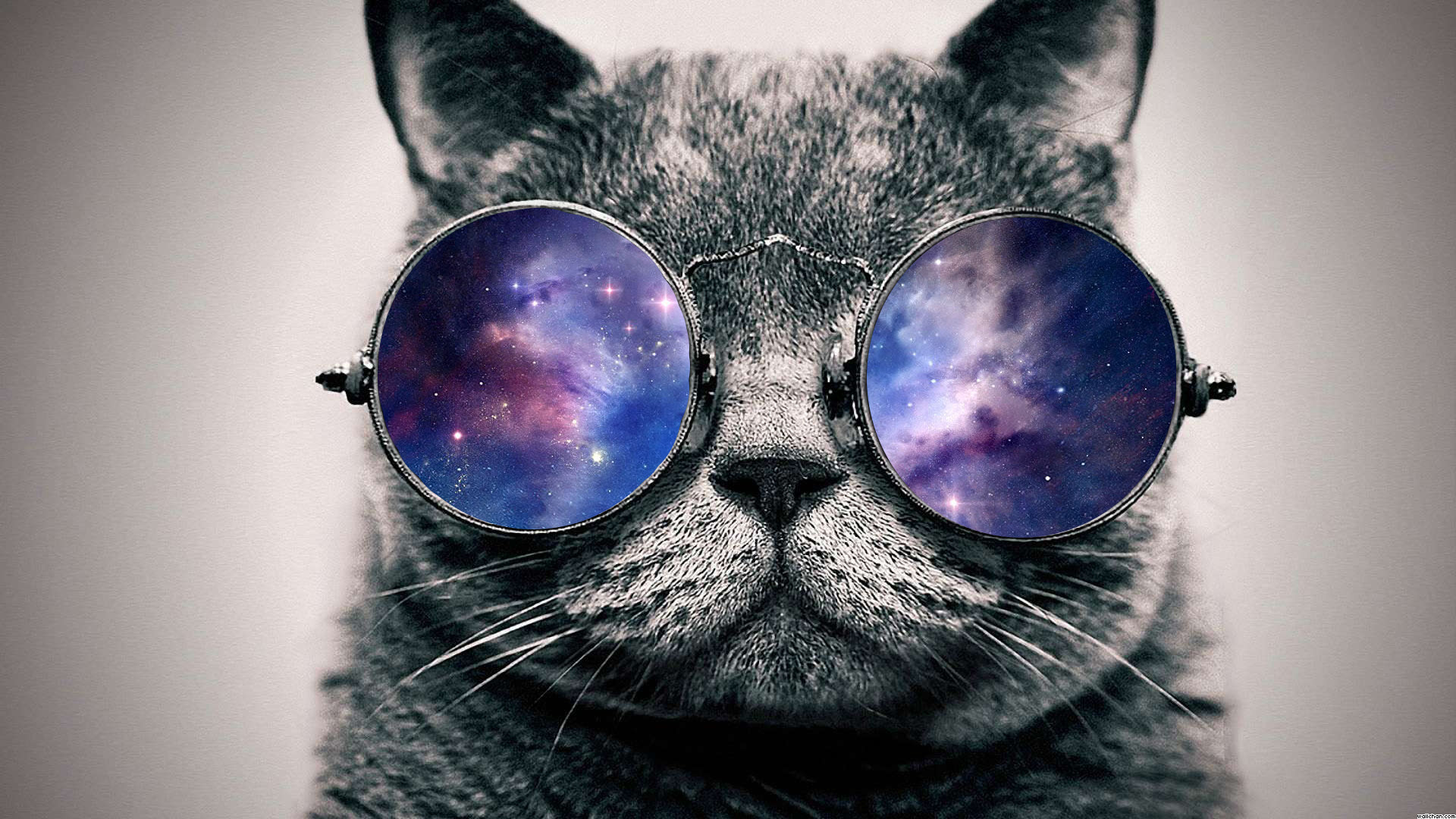 Space Cat with Galaxy Glasses - Pics about space