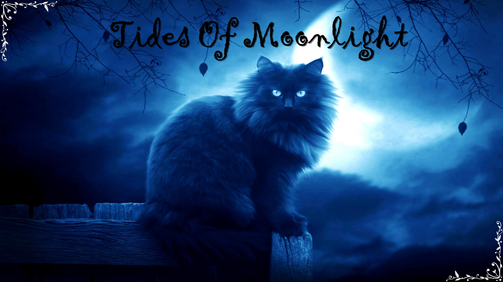 Tides Of Moonlight