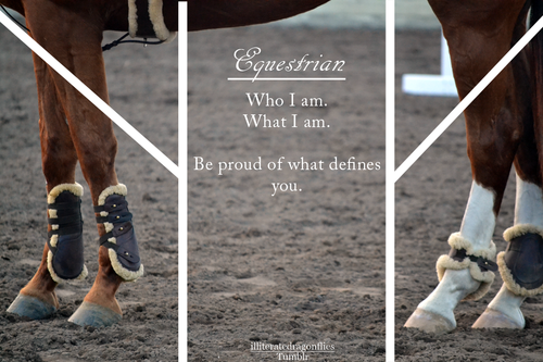 Famoso equestrianis | Tumblr PQ15