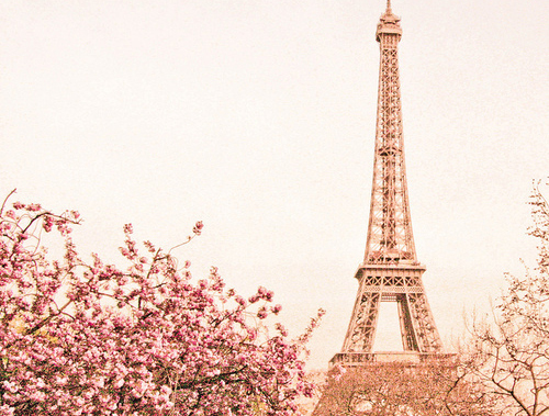 Eiffel Tower Tumblr Themes enchante by giamont