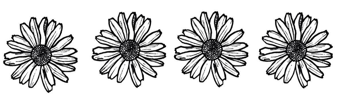 http://static.tumblr.com/51041e2233e9247fd7f6fd82bab28d2d/teuf839/yWzmxv4iw/tumblr_static_tumblr_static_daisies_for_ahunnaya.jpg
