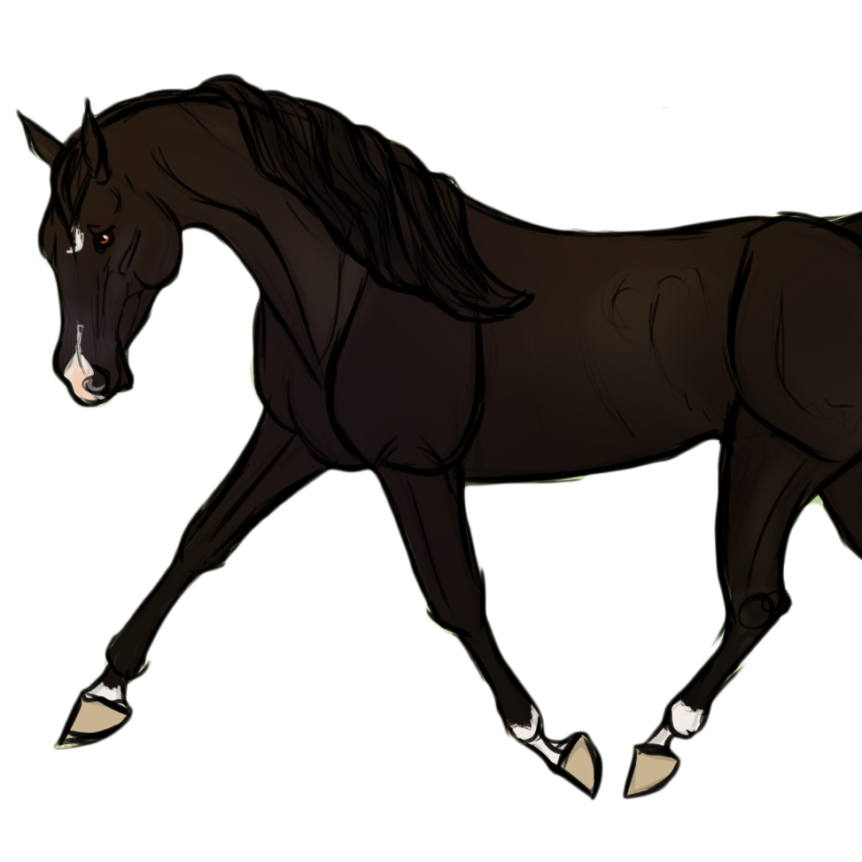 Great Wallpaper Horse Couple - tumblr_static_farley_transparent_sidebar_pic_copy  Image_759952.png