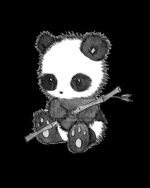 BIPOLARISM  Panda Tumblr Transparent