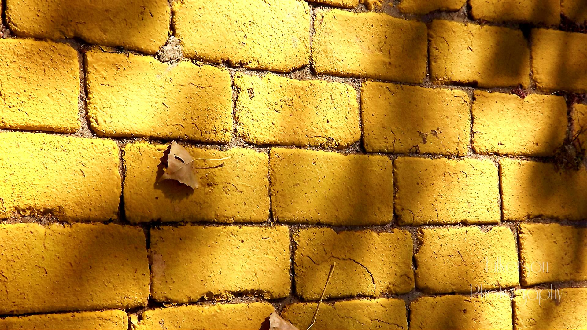 yellow brick wall | Tumblr