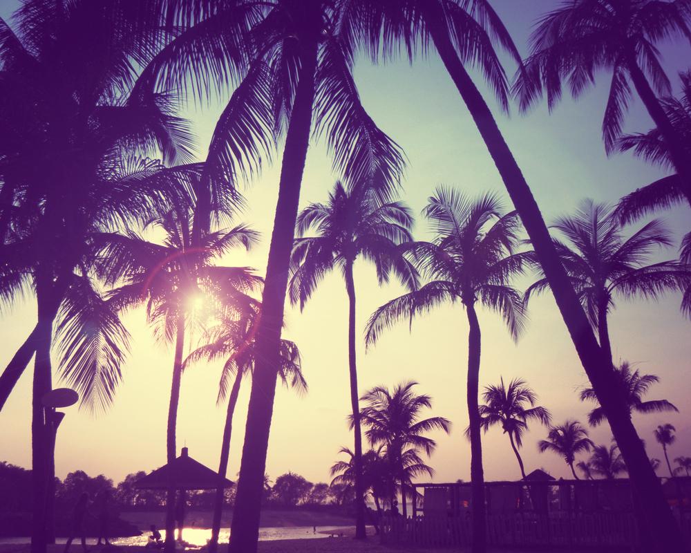 Beach be tumblr summervibes voltagebd Choice Image