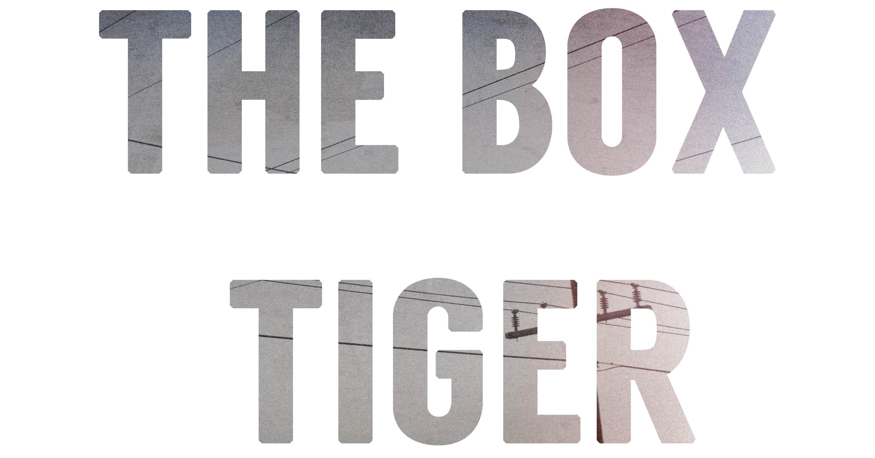the box tiger