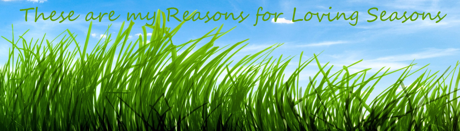 Reasons Four Loving Seasons