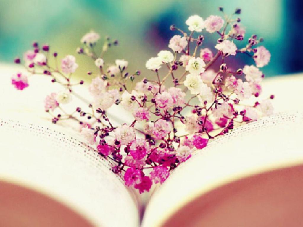 books desktop wallpapers tumblr - photo #24