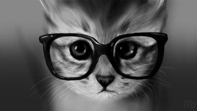 gatos hipster tumblr