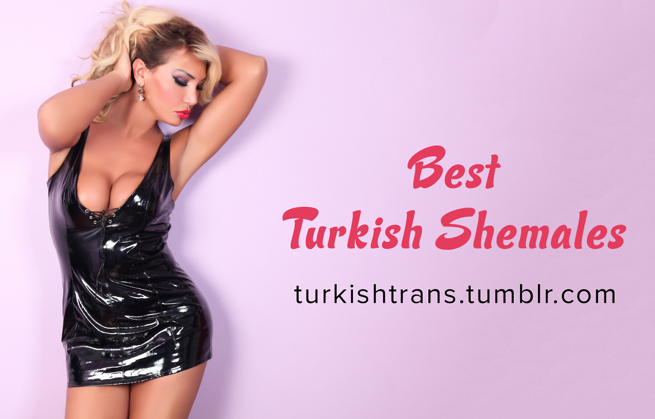 Turkish Shemale 15